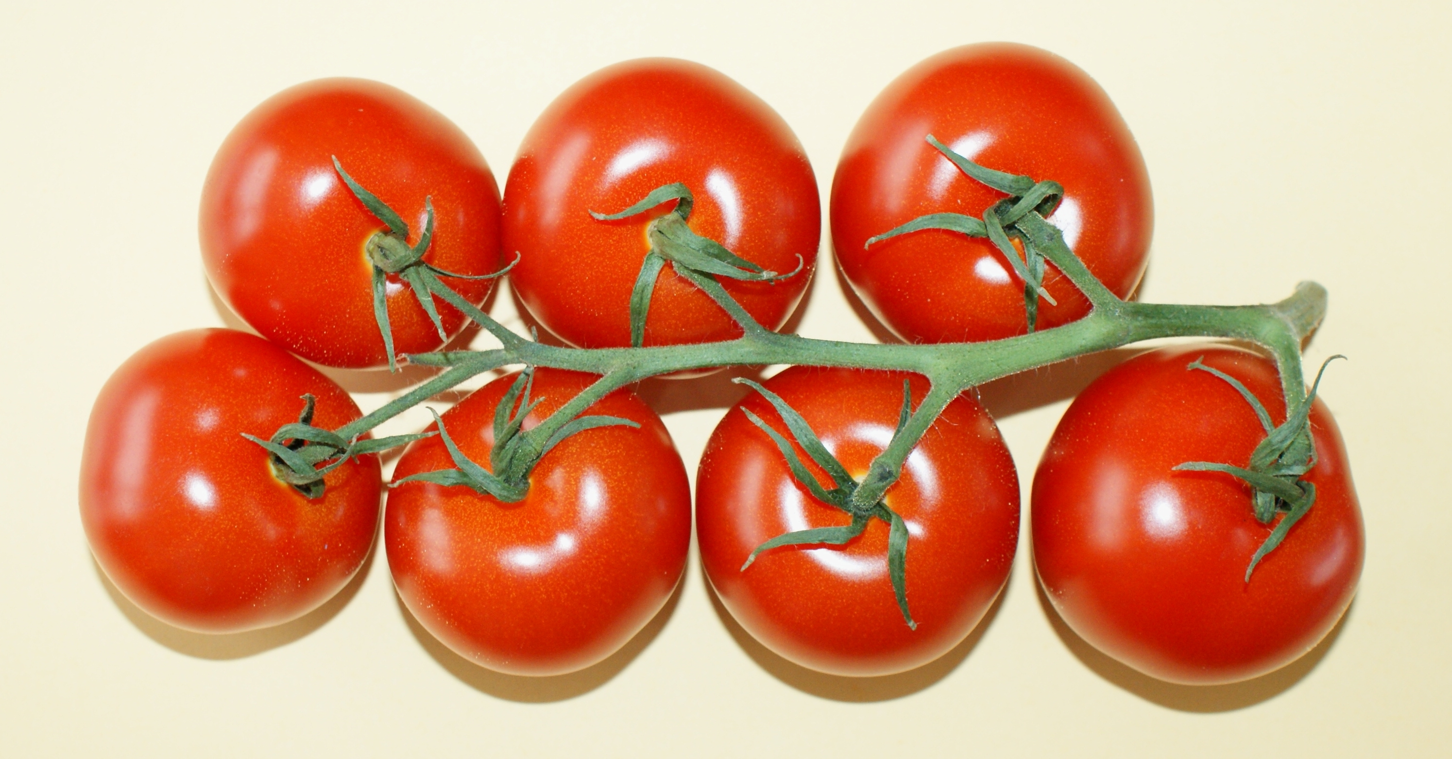 photo Tasty Tom Tomatoes